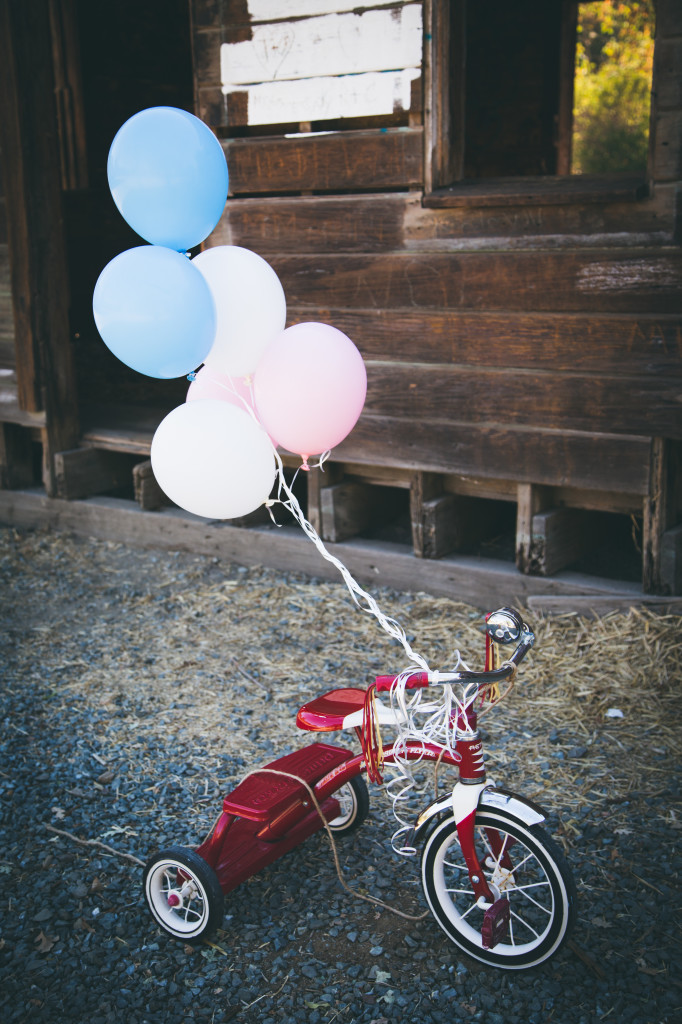 prego-announcement-pics-TRICYCLE-BY-ITSELF